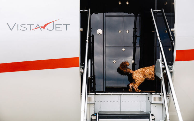 vistajet pet